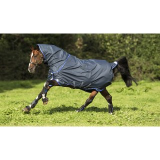 Horseware Amigo Bravo 12 Plus Turnout, 0g, light, Disk Verschluss