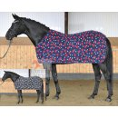 Busse cooler STARS - for shetty and ponie