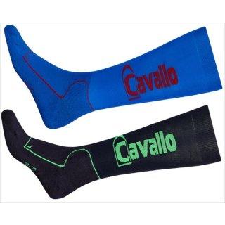 Cavallo knee stockings of extra