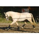 Busse lunging aid Cotton
